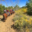group of horseback riders during a Raft Masters Colorado tour