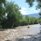 Family rafting down the river with the mountains in the background Raft Masters Colorado