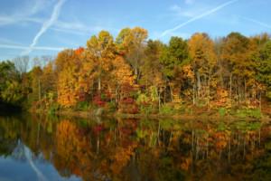 beautiful colors Rafting In Colorado In The Fall